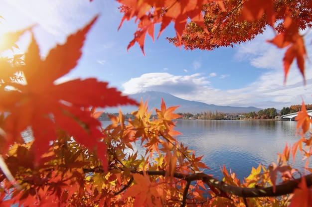 富士山の美しい風光明媚な風景、日本