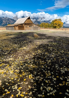 Beautiful scenic view of mormon row historic, grand teton national park.