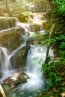 Beautiful scenic of the waterfall and green leaves.