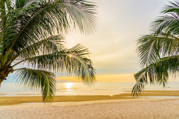 Beautiful sea ocean beach with palm tree at sunrise time for holiday