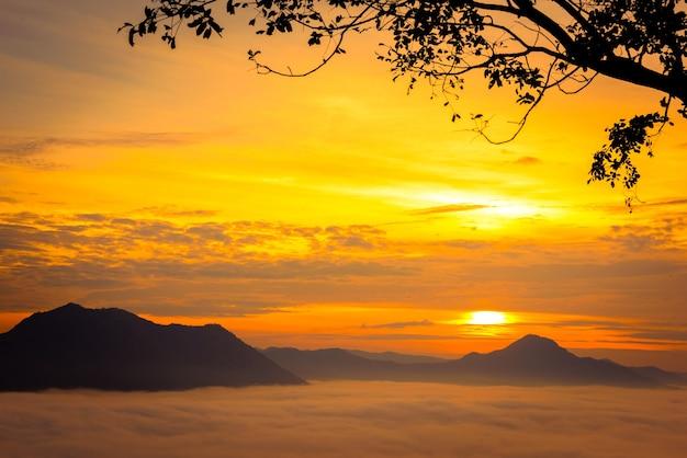 タイ、ルーイ県、チェンカーンのプートクの美しい雲海と日の出の景色。 Premium写真