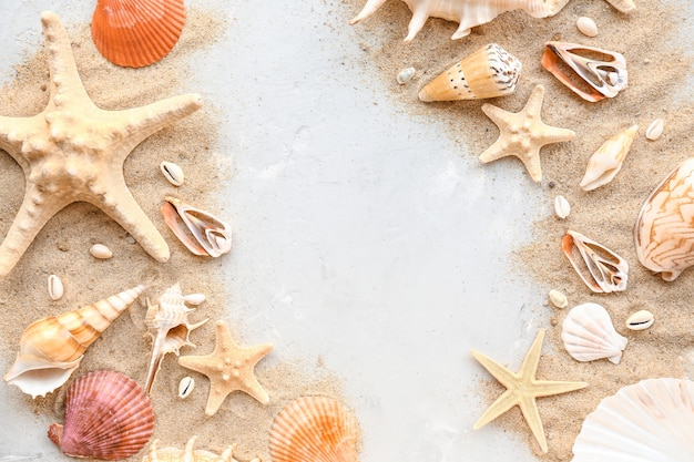 Beautiful sea shells, starfishes and sand on light background