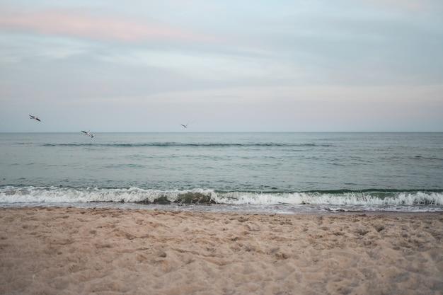 美しい海の夏の抽象的な背景。青い海と雲景と夕日が後ろにある黄金の砂浜。