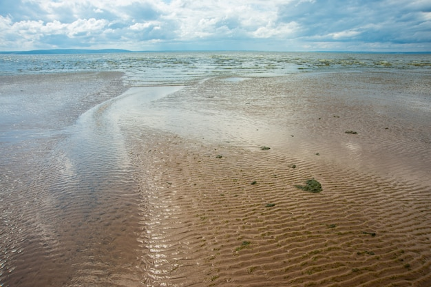 Beautiful sea summer or spring abstract. golden sand beach