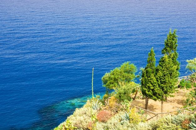 Tropea, 이탈리아에서 바위에 나무와 아름 다운 바다 전망