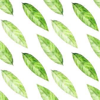 緑茶の葉と美しいシームレスパターン