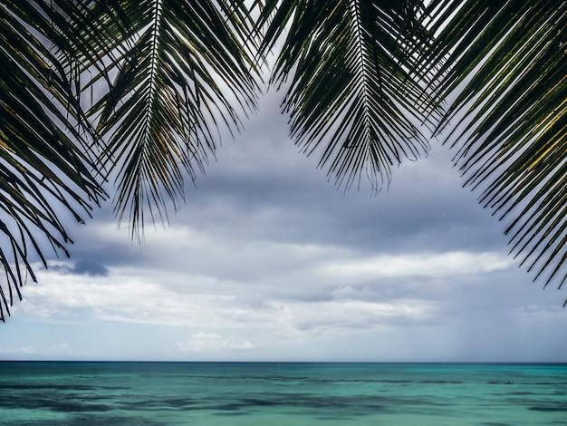 美しい海の景色。自然の背景