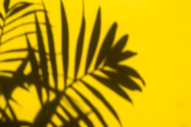 黄色の背景にヤシの木の葉からの美しい影。夏の明るい黄色の熱帯の背景。コピースペースの最小限の概念。フラットレイ