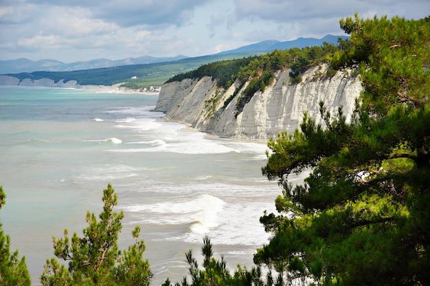晴れた日の黒海沿岸の美しい海岸