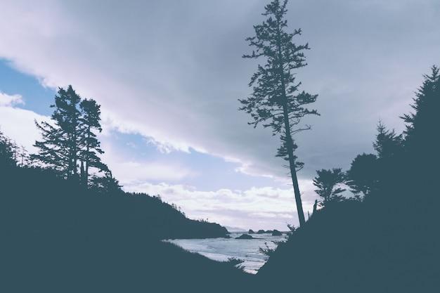 Beautiful shot of an amazing natural landscape