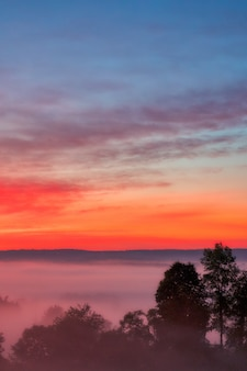 Beautiful shot of the amazing sunset with the red sky over a misty forest in the countryside