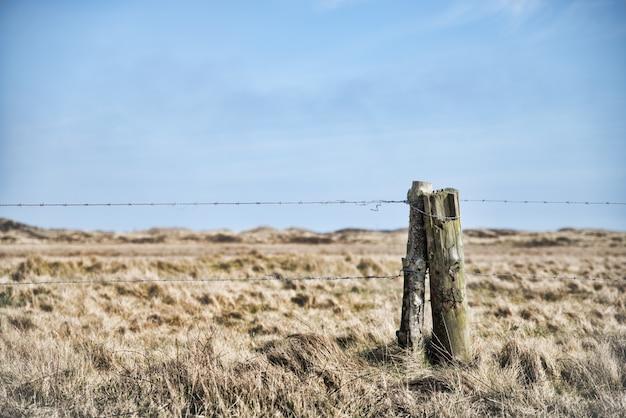 Bello colpo di filo spinato legato sul legno nel mezzo di un campo di erba sotto il cielo limpido