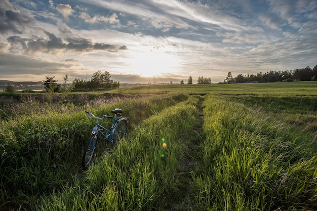 Beautiful shot of a bicycle in the grassy field during sunset in tczew, poland