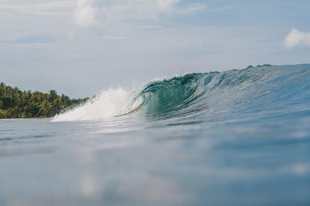 Bello scatto delle onde che si infrangono sul mare con gli alberi
