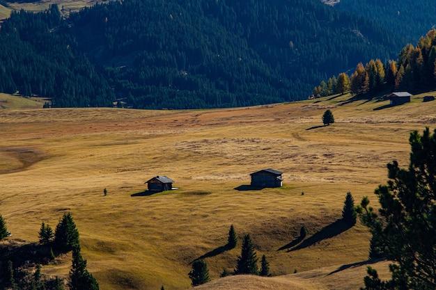 Bella ripresa di edifici su una collina erbosa con una montagna boscosa in lontananza nelle dolomiti italia
