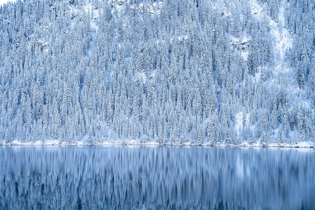 Beautiful shot of a calm lake with forested mountains covered in snow