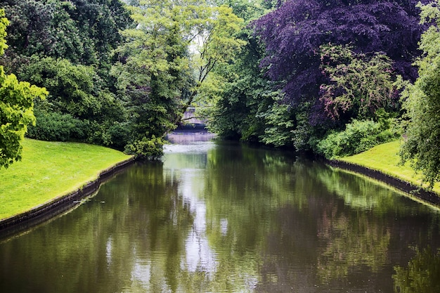 Beautiful shot of a canal with trees reflected on the water