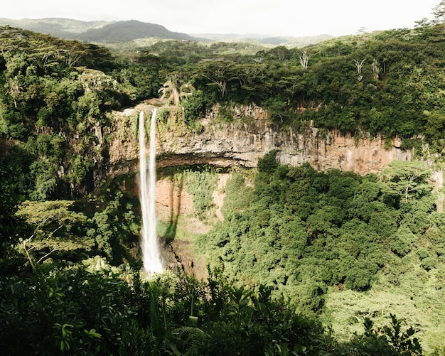 Beautiful shot of a chamarel waterfall in the jungle of mauritius island