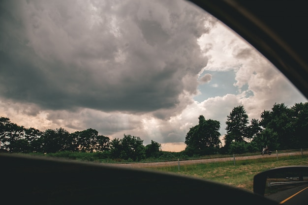 Beautiful shot of cloudy skies above trees taken from a car