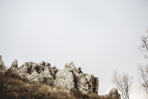 Beautiful shot of a dry grassy hill with rocks and leafless trees under a cloudy sky