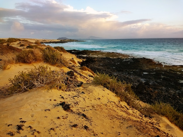 Beautiful shot of dunes on the beach in corralejo, spain