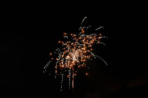 Bellissimo scatto di fuochi d'artificio che esplodono nel cielo notturno diffondendo un'atmosfera festosa