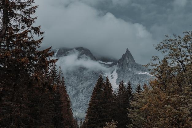 Bellissimo scatto di montagne rocciose nebbiose