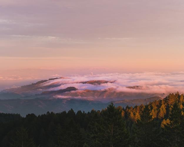 Bella ripresa di alberi verdi e montagne tra le nuvole in lontananza