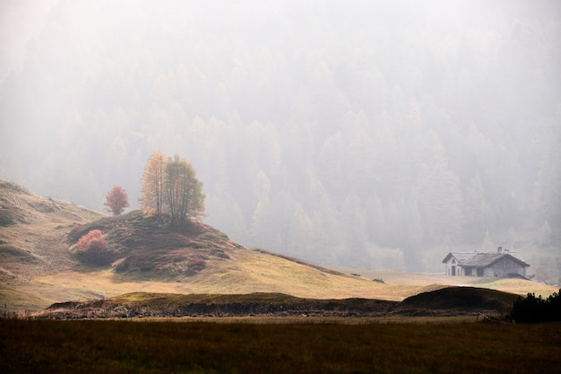 Beautiful shot of a house in a dry grassy field with a forested mountain in a fog