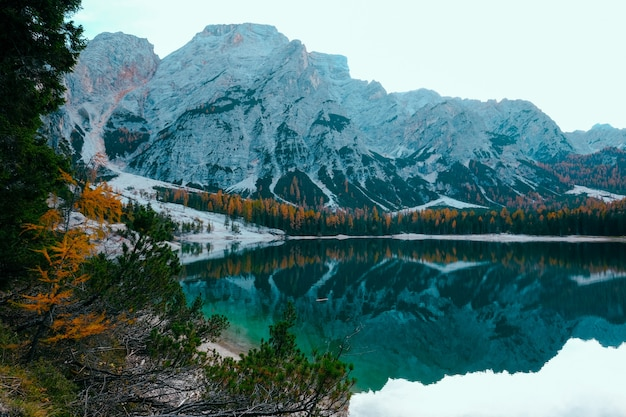 Beautiful shot of a lake surrounded by trees near snowy mountain