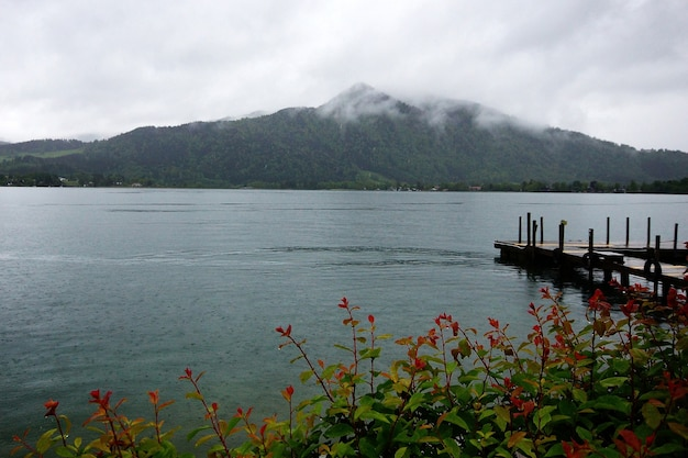 Beautiful shot of a lake with a bridge from a flowery bush with a cloudy mountain