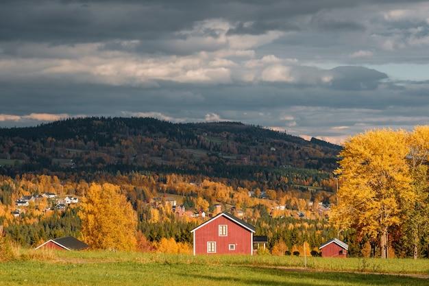 Bella ripresa di un paesaggio in autunno