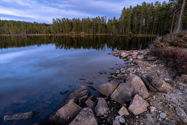 Beautiful shot of a landscape of a calm lake and the woods