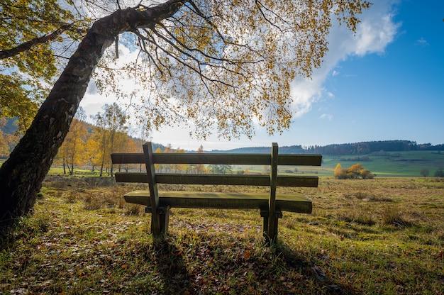 Bellissimo scatto di una panchina solitaria in una valle in una soleggiata giornata autunnale