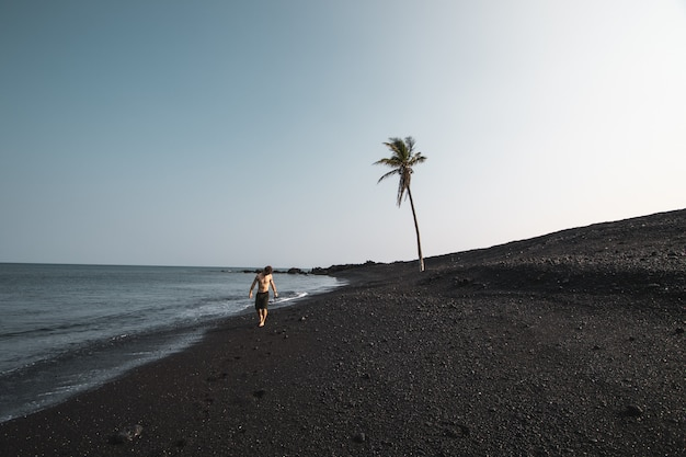 Beautiful shot of a male wearing swimsuit walking on the sandy seashore near a palm tree
