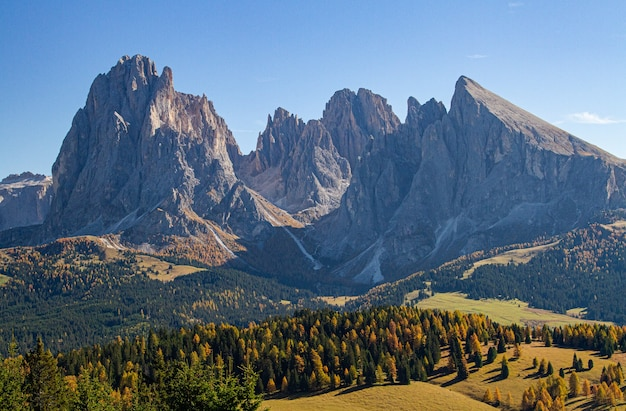 Beautiful shot of mountains and grassy hills with trees at dolomite italy