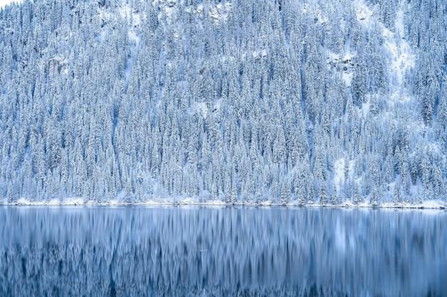 Красивый снимок спокойного озера с лесными горами, покрытыми снегом