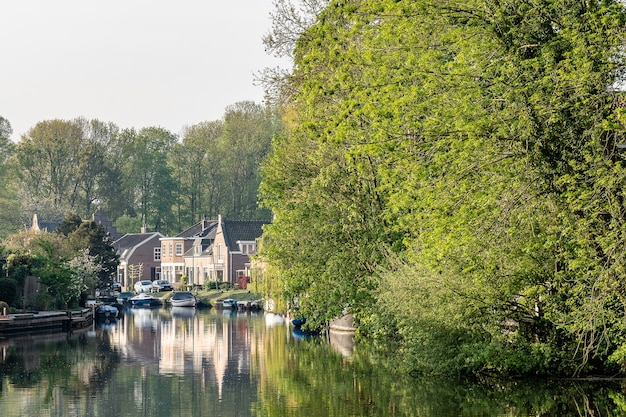 집과 나무로 둘러싸인 맑은 강의 아름다운 샷
