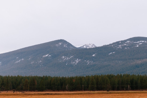 Красивый снимок сухого поля с зеленью и высокими скалистыми холмами и горами