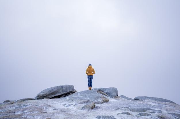 雪に覆われた山の石の上に立っている黄色のコートを着た女性の美しいショット