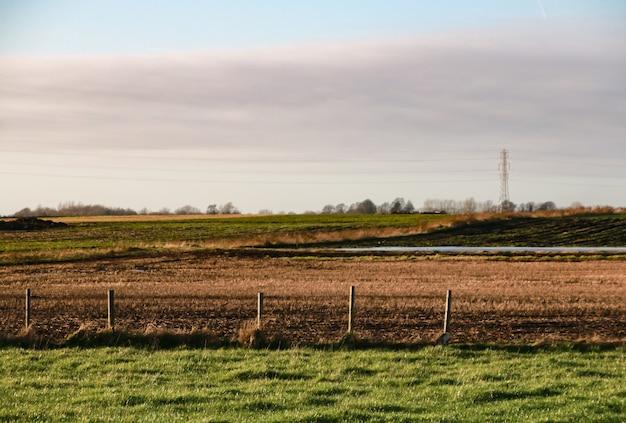 Красивый снимок поля с белыми облаками в ясном небе