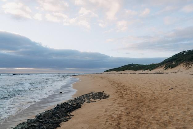 曇り空と黄金の砂浜の美しいショット