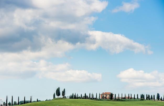 木々と青空の下で遠くに家のある芝生のフィールドの美しいショット