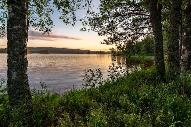 일몰 나무에 둘러싸인 호수의 아름다운 샷