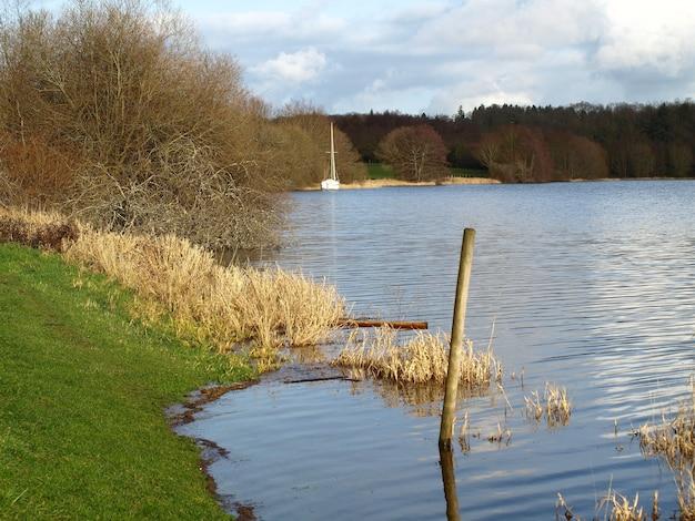 Красивый снимок берега озера