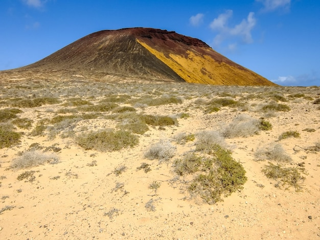 Красивый снимок пейзажа в солнечный день на тенерифе, канарские острова, испания