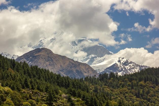 曇りの日の背景に山の風景の美しいショット