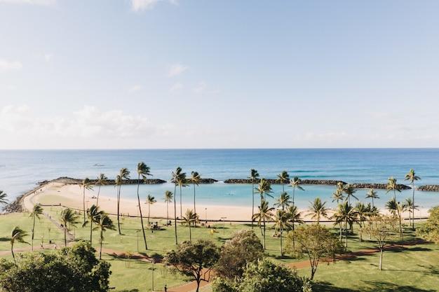 Красивый снимок берега моря с ясным голубым небом на заднем плане
