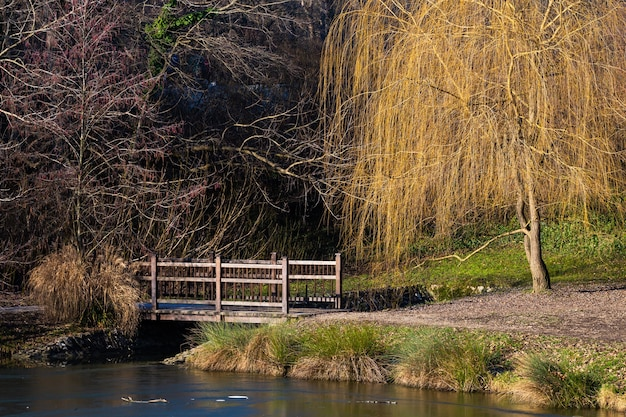 昼間のクロアチア、ザグレブのマクシミール公園の湖にある小さな橋の美しいショット