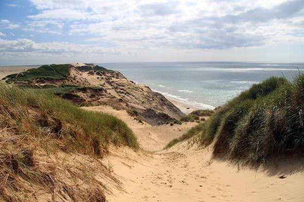 Красивый снимок берега пляжа под пасмурным небом